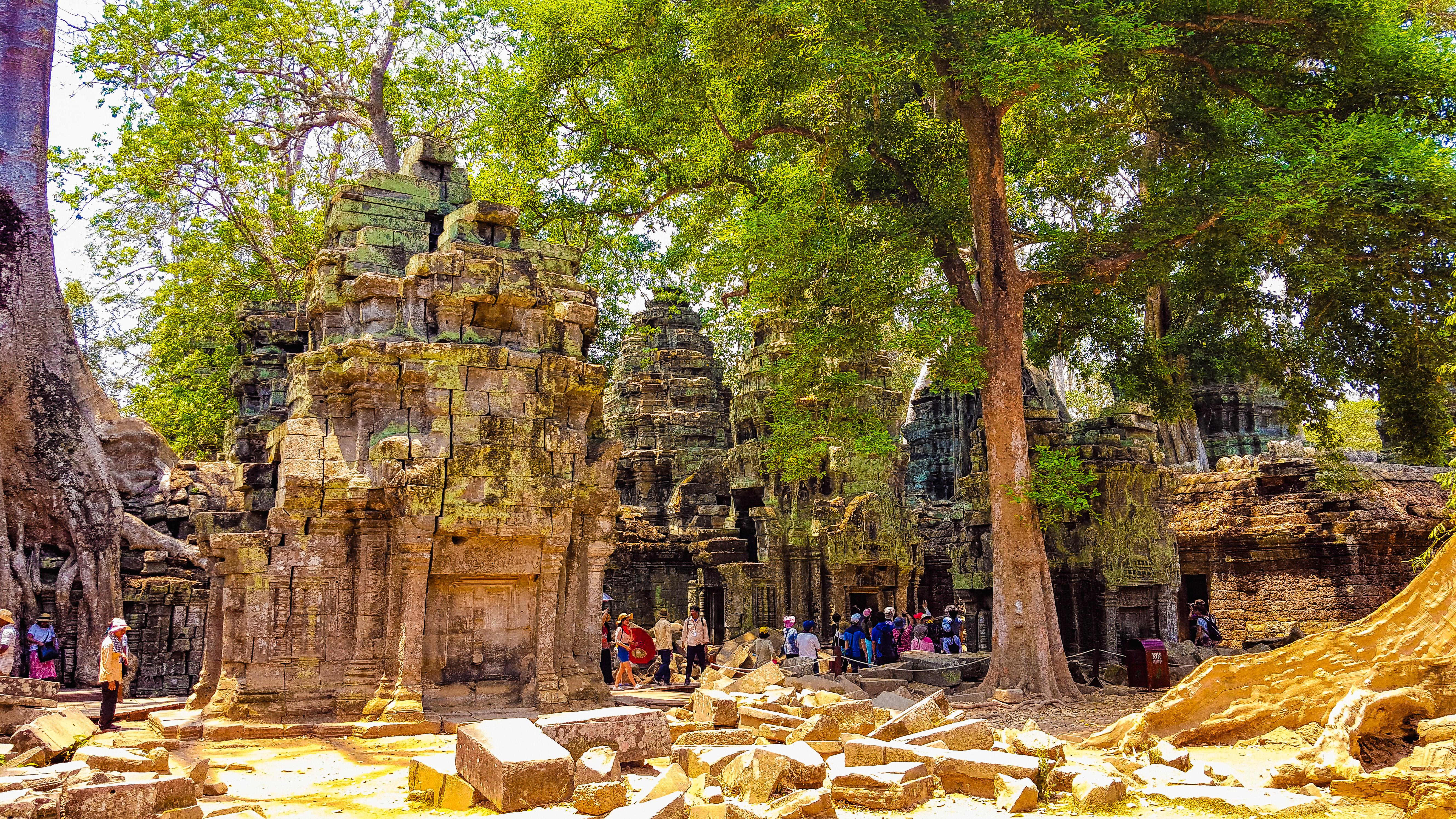 Cambogia Ta Phrom