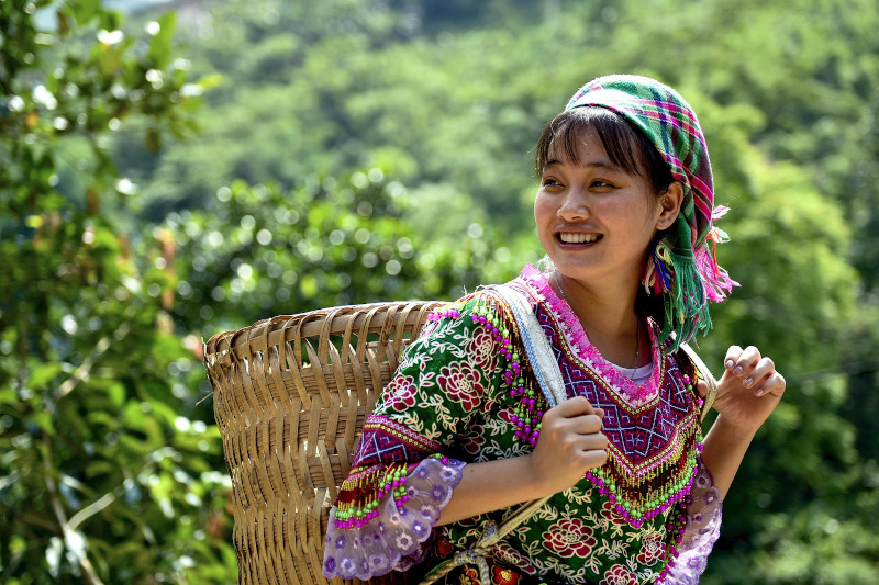 Museo etnologico del Vietnam: Hanoi