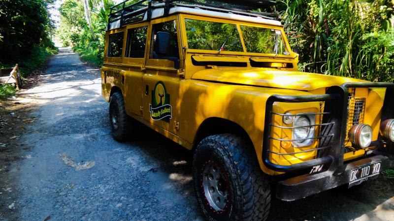 Safari a Bali