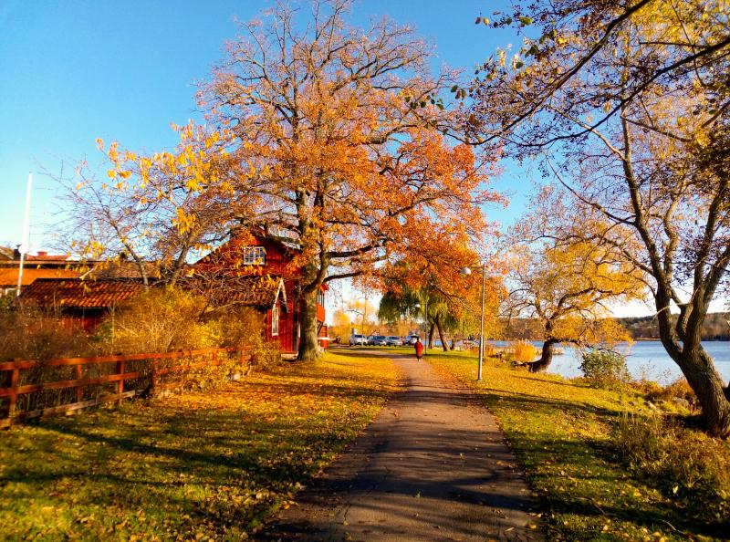 Sigtuna_Svezia