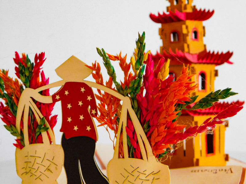 Guida allo shopping ad Hanoi