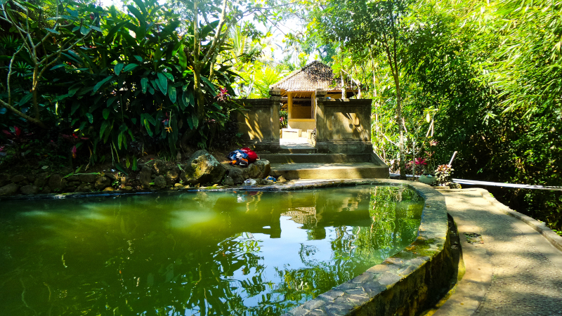 Safari Bali tra foreste e cascate