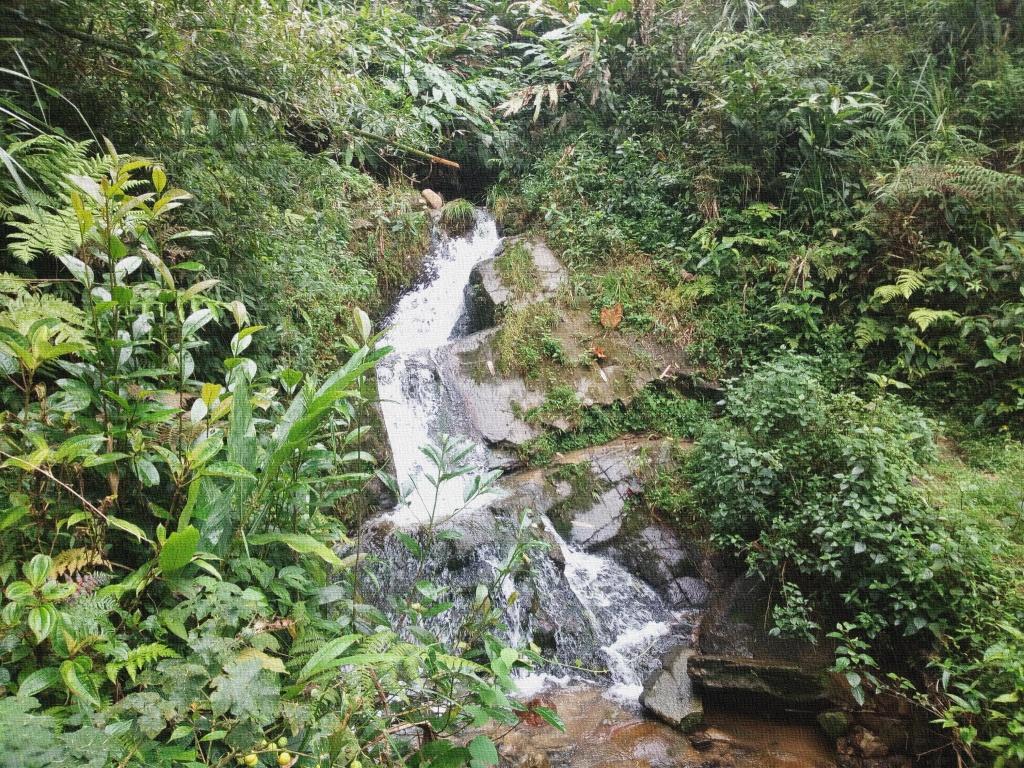 4 Parchi in Vietnam del patrimonio ASEAN
