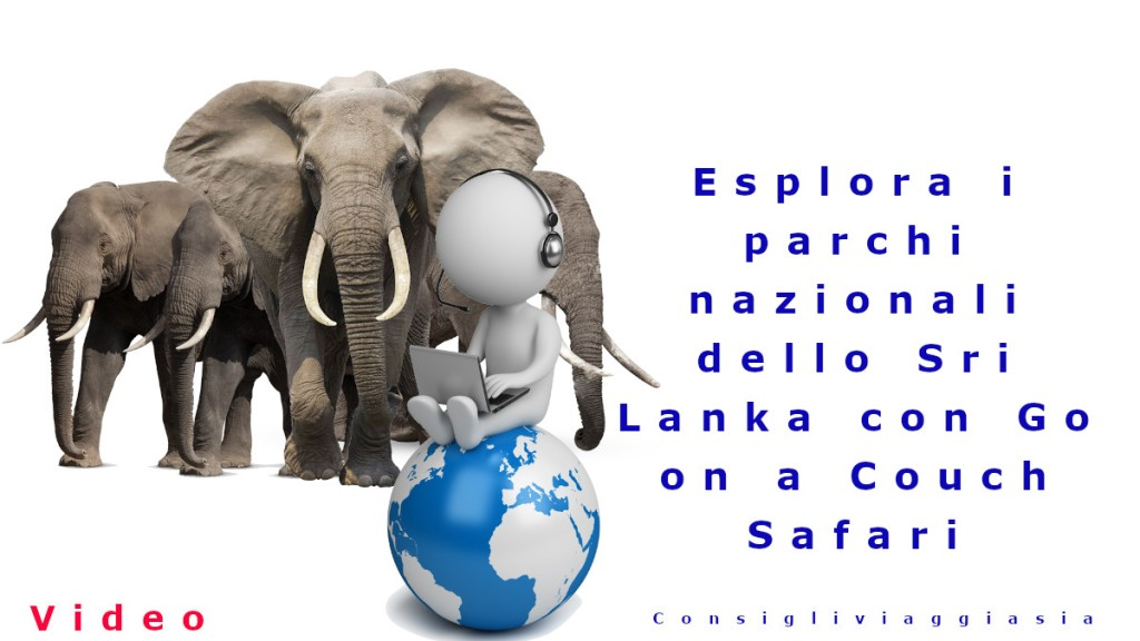 Esplora i parchi nazionali dello Sri Lanka con Go on a Couch Safari